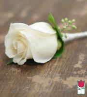 Boutineer - Single White Rose
