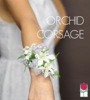 Wrist Corsage - Orchids
