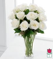 Beretania's Premium White Rose Masterpiece (30% Larger flower)