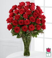 Beretania's 3 Dozen Long Stem Rose Bouquet