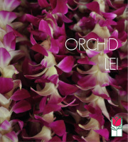 5 Orchid Lei