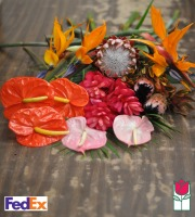 The Beauty of Hawaii Bouquet - Cut Flowers - [ship to mainland]