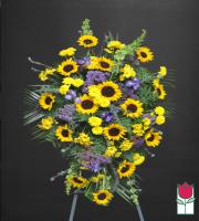 Beretania's Violet Sunshine Medium Spray