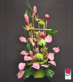 Beretania's Royal Hawaiian Tropical Arrangement