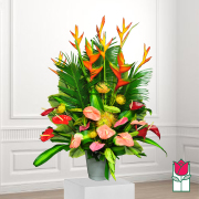 Beretania's Citron Tropical Bouquet