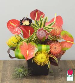 Beretania's Paradise Tropical Bouquet<b>[Tropical Varieties Vary] </b>