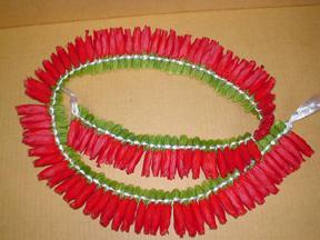 Micronesian Hibiscus
