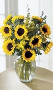 The FTD® Endless Sunflower™ Bouquet