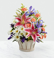 FTD Wondrous Nature Basket $44.99
