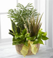 FTD French Garden $72.99