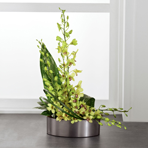 The FTD® Irresistible Orchid™ Arrangement