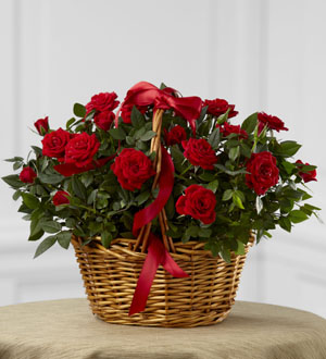 The FTD® Mini Rose