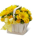 The FTD� Uplifting Moments� Basket