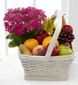 The FTD� Garden's Paradise� Basket