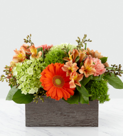 The FTD® Hello, Gorgeous™ Bouquet