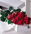 The FTD� One Dozen Boxed Roses