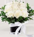 Le bouquet de roses Tendre romance FTD®