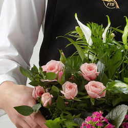 The FTD® Florist Designed Sympathy Dishgarden