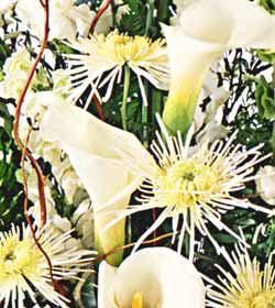 Corbeille de condoléances du fleuriste