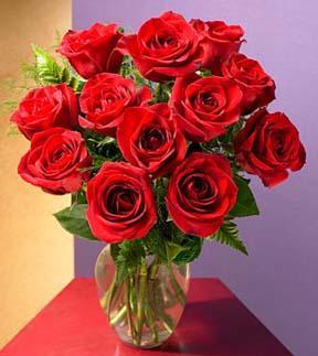 1 Dozen Red Medium Stem Roses - with Vase