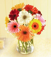 Gerbera Daisy Bouquet with Vase