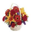 The FTD� Fun in the Sun� Basket