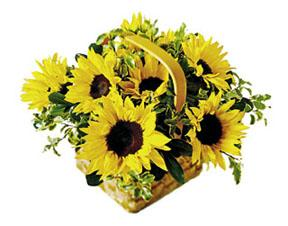 The FTD® Sunflower Basket
