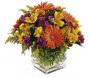 Le Bouquet Souhaits Merveilleux™  de FTD®