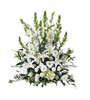 The FTD® Morning Stars ™ Arrangement