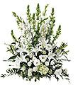 The FTD� Morning Stars � Arrangement