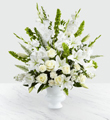 FTD Morning Stars Arrangement $154.99