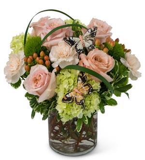 Brainerd floral song of gratitude brainerd mn 56401 ftd florist song of gratitude mightylinksfo