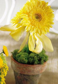 The FTD® Yellow Gerbera Centerpiece
