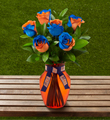 The FTD® University of Illinois™ Fighting Illini® Rose Bouquet- 6 Stems