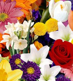 FTD® Florist Designed Wrapped Bouquet