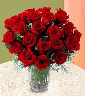 The FTD® 2 Dozen Long Stem Rose Bouquet