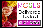 Send ROSES with Delivery Today by The Grand Rapids Area Florist Sunnyslope Flora