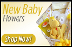 Order FLOWERS for a NEW BABY and send a SAME DAY Delivery Bouquet for BABY BOY or BABY GIRL Sunnyslope Floral