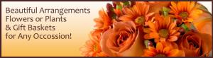 PA, NJ Florist, Flowers