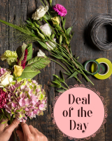Deal of the Day Spring