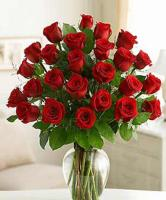 Two Dozen Red Roses designed