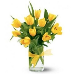The Tulip Bouquet - Yellow