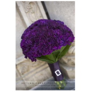 TRADITIONAL PURPLE CARNATION BOUQUET
