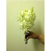 WHITE ORCHID WITH JEWELED WRAP
