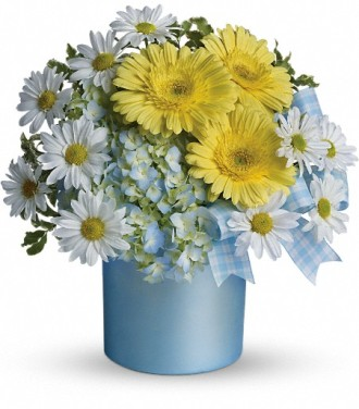 Teleflora\'s Once Upon a Daisy