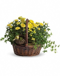 European Garden in a Basket