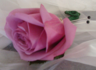 PINK ROSE BOUT