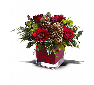 Flowers By Bauers Cozy Christmas
