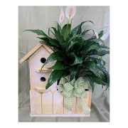 Single Birdhouse Planter