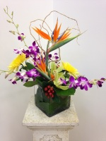 BIRD OF PARADISE CONTEMPORARY FLORAL